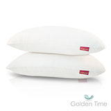 GOLDEN-TIME【抗菌壓縮對枕】