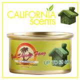 【御香坊California Scents】葡萄柚CAN047 VISTA GRAPEFRUIT 淨香草