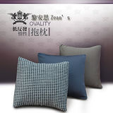 [黎安思-Zean`s] OVALITY低反發惰性抱枕2入-晶鑽灰