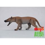 【MOJO FUN 動物模型】動物星球頻道獨家授權 - 鬣齒獸