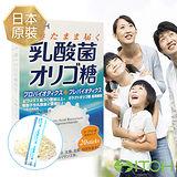 井藤ITOH 乳酸菌木寡糖粉1盒