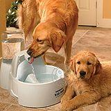 美國《DRINKWELL》好好喝大狗狗專用瀑布噴泉電動飲水機(8516ml)