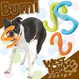 美國West Paw Design《Būmi - S型》8吋 耐咬拉扯浮水玩具