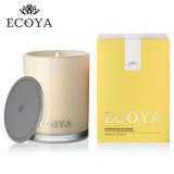【澳洲ECOYA】 天然大豆棕櫚高雅香氛蠟燭 - 香茅薑根  400g