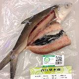 台江漁人港 雙刀流虱目魚-全魚(12兩/隻)共3隻