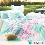 《一枝獨秀》雙人100%天絲TENCEL四件式兩用被床包組
