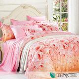 《愛若拉》特大100%天絲TENCEL四件式兩用被床包組