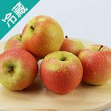 日本TOKI蘋果40/6粒(250g+-5%/粒)