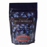 特拉佛斯天然整顆藍莓乾85g