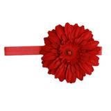 美國Jamie Rae 100%純棉髮帶 嫣紅細髮帶+經典嫣紅雛菊 (JRFBD04)