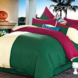 《KOSNEY 羅馬文化》流行三色拼接雙人四件式床包被套組