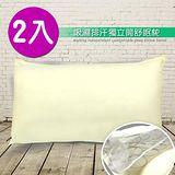 精靈工廠 吸濕排汗獨立筒舒眠枕 -2入(B0594*2)