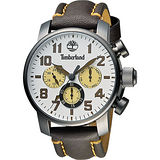 Timberland Mascoma 中性錶面日曆腕錶-銀白x咖啡/45mm TBL.14439JSU/07