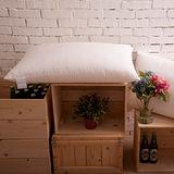 BBL 超彈力柔適枕