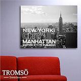 TROMSO時尚無框畫/文字紐約