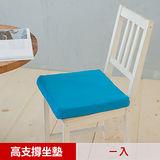 【凱蕾絲帝】久坐專用二合一高支撐記憶聚合紓壓坐墊-水藍(1入)台灣製造