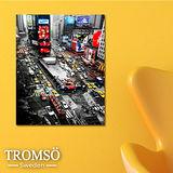 TROMSO時尚無框畫/時代紐約(小)