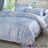 【AmoreCasa】北歐氣息 100%TENCEL天絲加大兩用被床包四件組