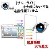 D&A Panasonic Lumix DMC-FZ300 相機專用日本9H抗藍光疏油疏水增豔螢幕貼