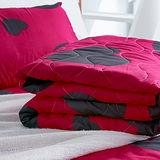 美夢元素 心有靈犀 天鵝絨涼被床包組 雙人四件式