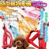 dyy》中大型犬時尚伸縮胸背寵物胸背牽繩組120cm*2.5cm款項隨機出貨