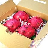 【鮮果日誌】紅肉紅龍果/火龍果(4入禮盒裝)