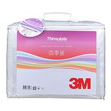 3M 水洗專用被 - 四季棉被雙人尺寸 (6*7)
