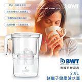 BWT 鎂離子健康濾水壺(二入組) Yara 2.6L