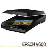 EPSON Perfection V600 Photo掃描器