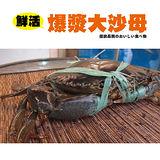 【秋蟹祭典】鮮活野生大沙母2隻(500~600g/隻)