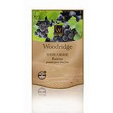 森之果物嚴選特大葡萄乾350g
