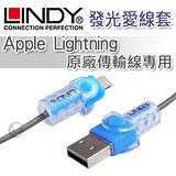 LINDY 林帝 Apple Lightning 原廠傳輸線專用 發光愛線套
