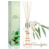 法國天然香氛水竹精油100ml-香水尤加利