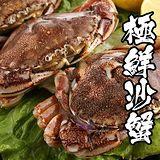 海鮮王 鮮級生凍沙蟹 *8隻組 100g/隻