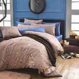 MONTAGUT-公爵的金桔茶-260織紗精梳棉-兩用被床包四件組(褐色-加大)