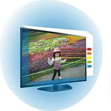 32吋[護視長]抗藍光液晶電視護目鏡LG C1款