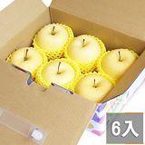 鮮果日誌 日本空運金星蘋果 6入禮盒