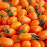 【果之家】美濃溫室優質橙蜜香小蕃茄10台斤禮盒
