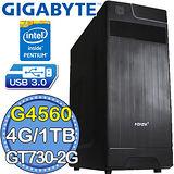 技嘉H110平台【天狗攻勢】Intel第七代G系列雙核 GT730-2G獨顯 1TB效能電腦