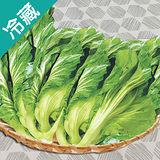台灣長年菜2粒(500G±5%/粒)