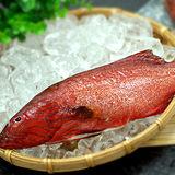 【築地一番鮮】峇里島野生紅鰷石斑魚(250±50g/條)-任選