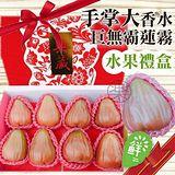 【果之蔬】蓮霧界中的LV-巴掌大香水蓮霧(2kg±10%/禮盒裝)