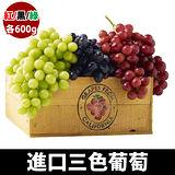 【台北濱江】進口三色葡萄1.8kg/盒(紅黑綠3種葡萄各600g/1斤)