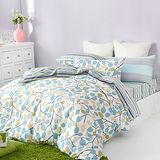 美夢元素 精梳棉 單人兩件式枕套床包組-清閒雅致