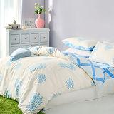 美夢元素 精梳棉 雙人三件式枕套床包組-點趣生活