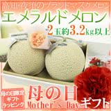 【果之蔬】日本【皇冠】靜岡縣溫室栽培哈密瓜(1.5kg/顆)禮盒2顆