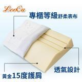 (品特) LooCa特級舒鼾護肩專利記憶枕(2入)