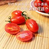 【鮮果日誌】玉女小番茄(6盒裝)