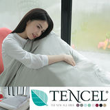 ALICE愛利斯【100%天絲TENCEL】單人 薄床包枕頭套組 波斯灰(純色原創設計)