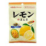 日本藤井 糖漬檸檬皮25g